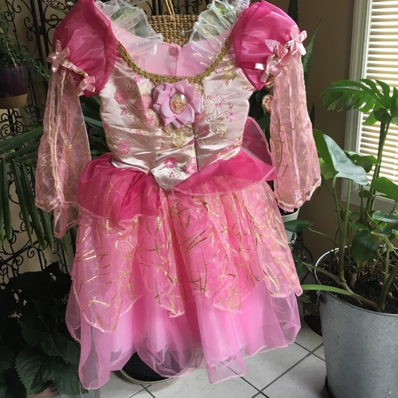 Barbie Costumes Princess Costume Poshmark